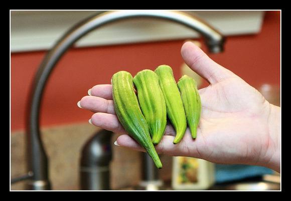 Pickled Okra 1.jpg